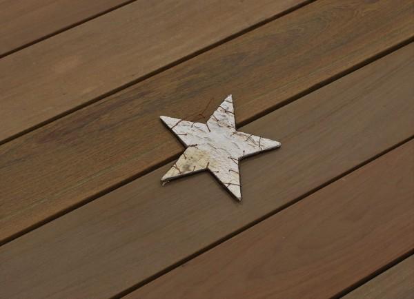 Angebot des Monats, Terrassendielen Ipe Premium (KD) 21 x 145 bis 6100 mm, glatt für 13,90 €/lfm