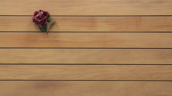 Terrassendielen Garapa Premium (KD) 45 x 145 bis 6100 mm, glatt für 16,90 €/lfm